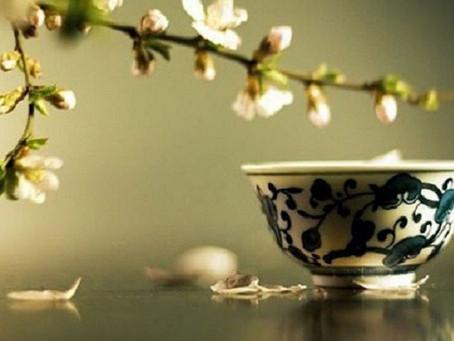 Korea's most Expensive Tea