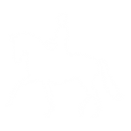 Dressage white.png