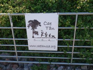 CAE TAN CSA TRIP