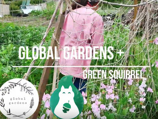 GREEN SQUIRREL SUMMER CELEBRATIONS @GLOBAL GARDENS