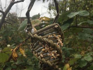 MAKING BIRD FEEDERS@OUTDOOR PLAY