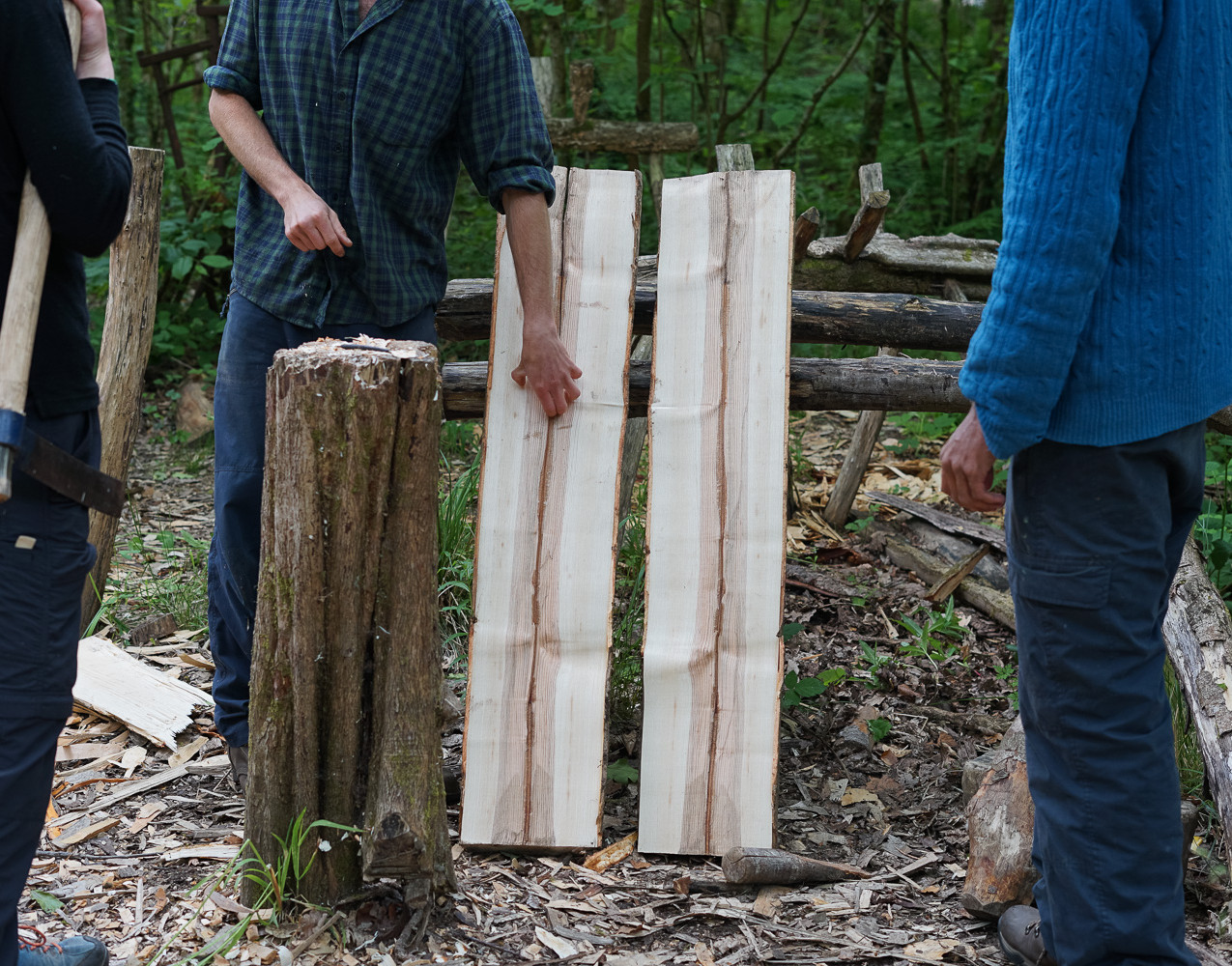 The split wood