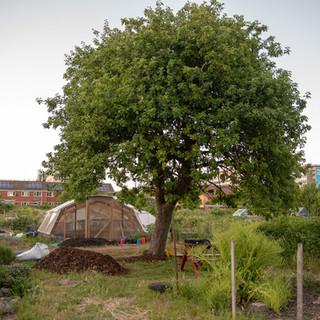 Global Gardens site