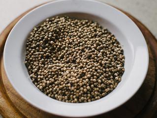 CROPSHARE #2: Coriander seeds