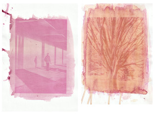 ANTHOTYPE AND CYANOTYPE PRINTING