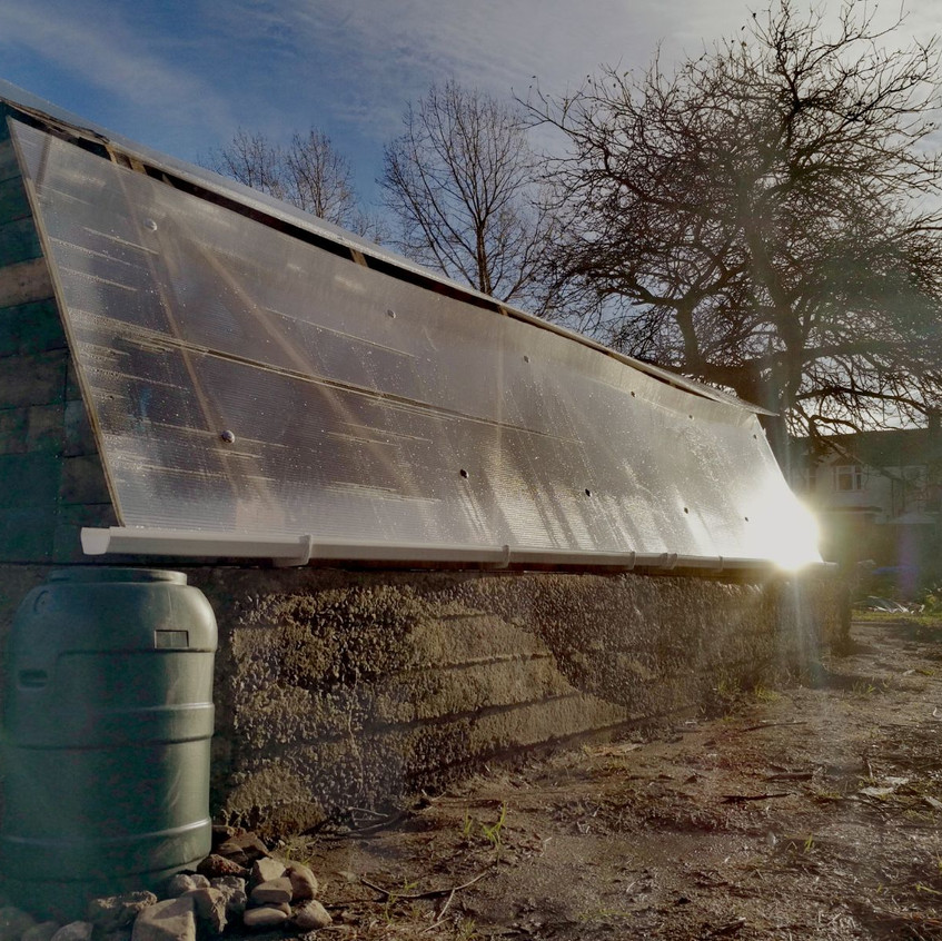 greenhouse rear