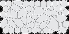5.ECD-nomal-poly-pleo.png