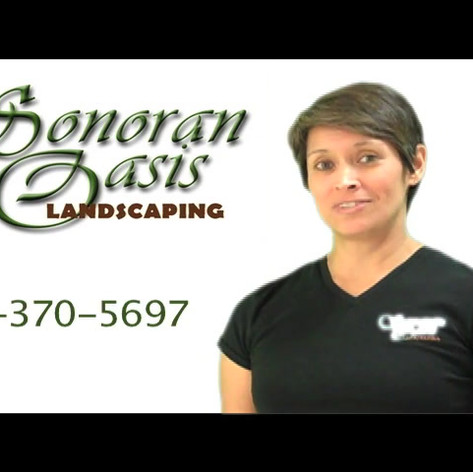 Sonoran Oasis Landscaping