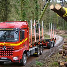 home-timber-haulage.jpg
