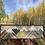 Thumbnail: Cascadia