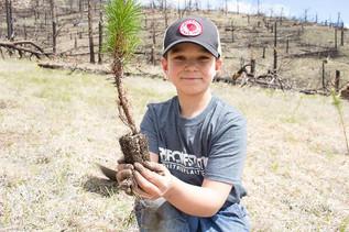 EARTH DAY RECAP: REFORESTATION IN COLORADO