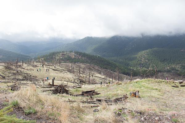 Colorado_Earth_Day- (2)