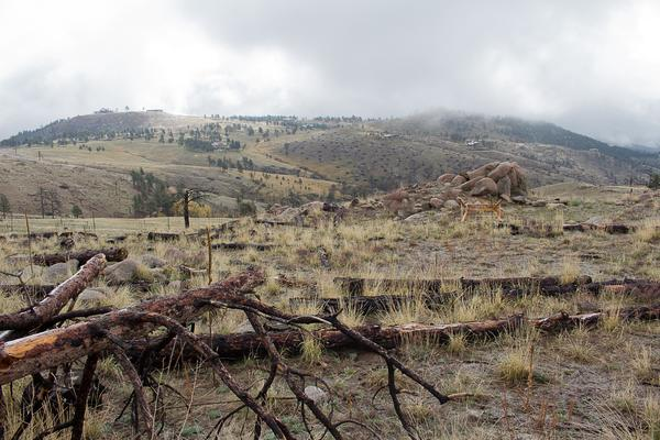Colorado_Earth_Day- (10)