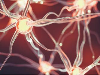 Pesquisa mostra que praticar esportes induz nascimento de novos neurônios