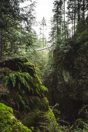 Lynn Valley, BC, Canada