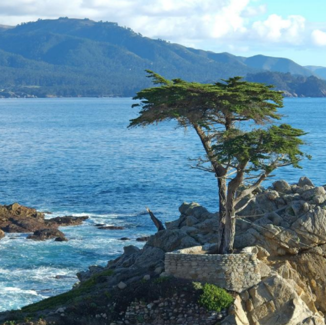 17 MIle Drive Self Guided Audio Tour ( 5 Star )