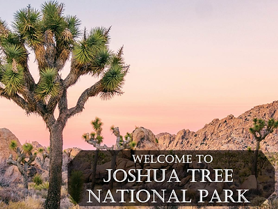 St 1 - Joshua Tree Visitor Center.png