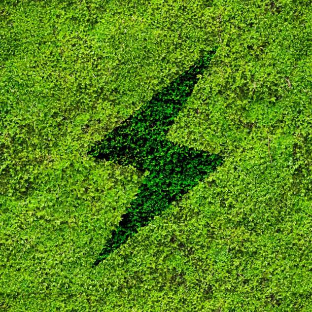 Sprint Grass