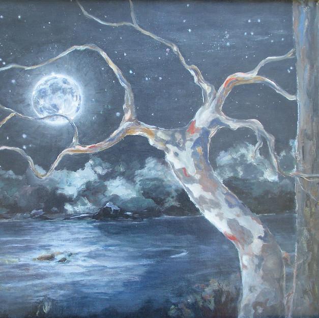 Hoffnagle_Frances_Sycamore Moon_Acrylic