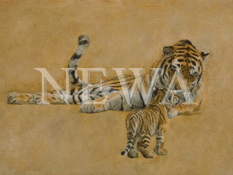 Works in NEWA Exhibition