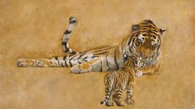 Amur and Cub