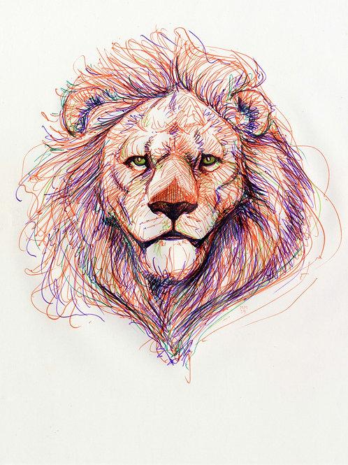 Multicolour Aslan A5 Print