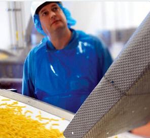 Bulk Handling Food Conveyor