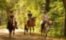 cher a cheval.jpg