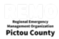 REMO B&W.png