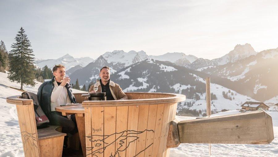 fondue, alpes suizos, suiza