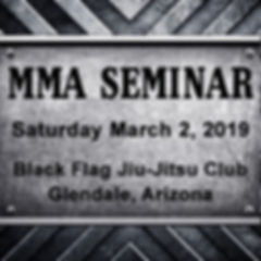 MMA Seminar at Black Flag March 2019