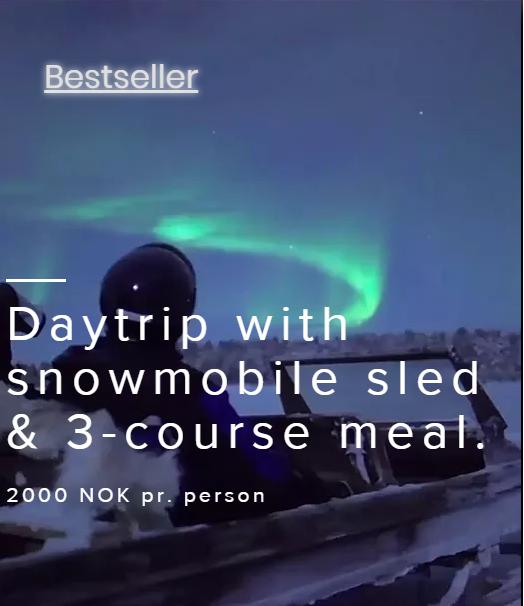 Snowmobile tour w/food
