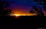 jan helmer bilde kveld sol.png