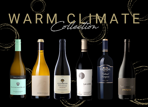 Warm climate wine south africa