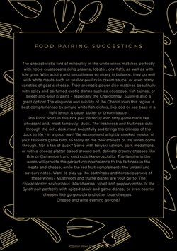 Food pairing suggestions
