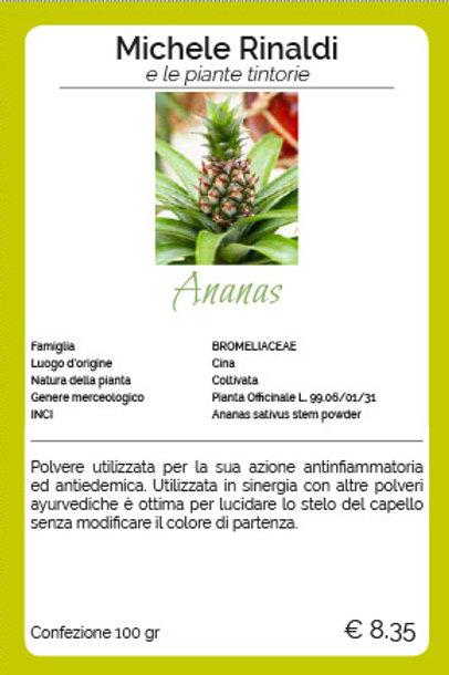 Ananas - MICHELE RINALDI
