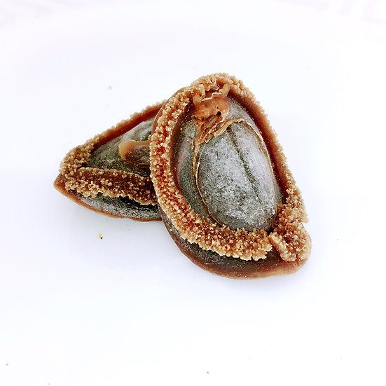 吉品鮑魚 The Best Abalone (40-43 pieces)