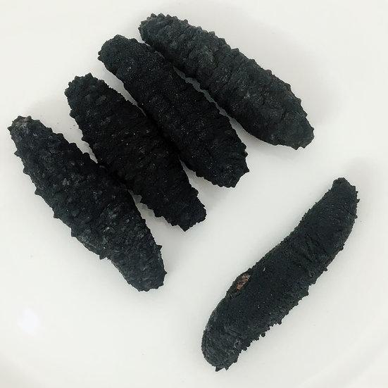 中號地中海黑米海參(一磅約58-61只)