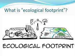 The Human Footprint on Earth