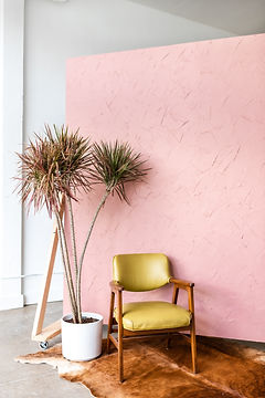 Pink Backdrop-3.jpg