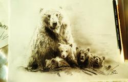 family bear