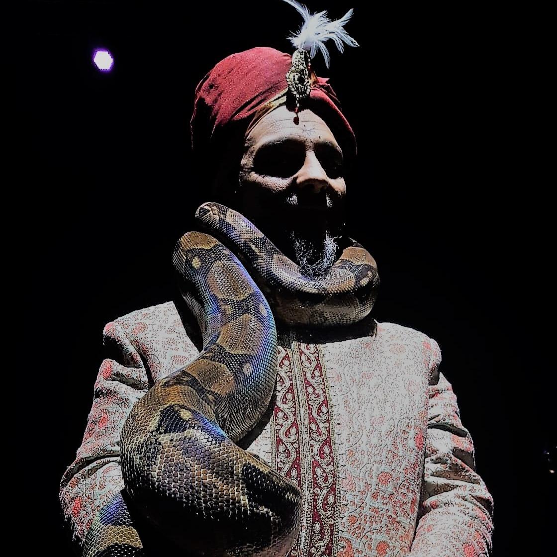 Charmeur de serpents Linja