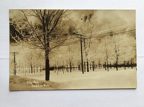 Cadillac, MI - City Park_ Snow Storm 1910