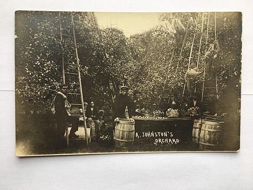 Eaton Rapids - A. Johnson's Orchard