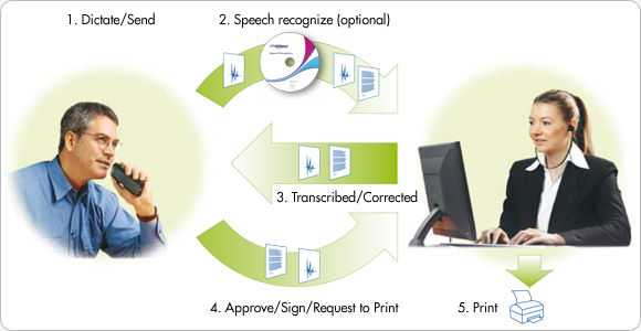 GL Informatics, Inc. | United States | Dragon Legal v15 Workflow Diagram