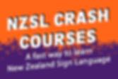 2019_NZSL_crash_course_website.jpg