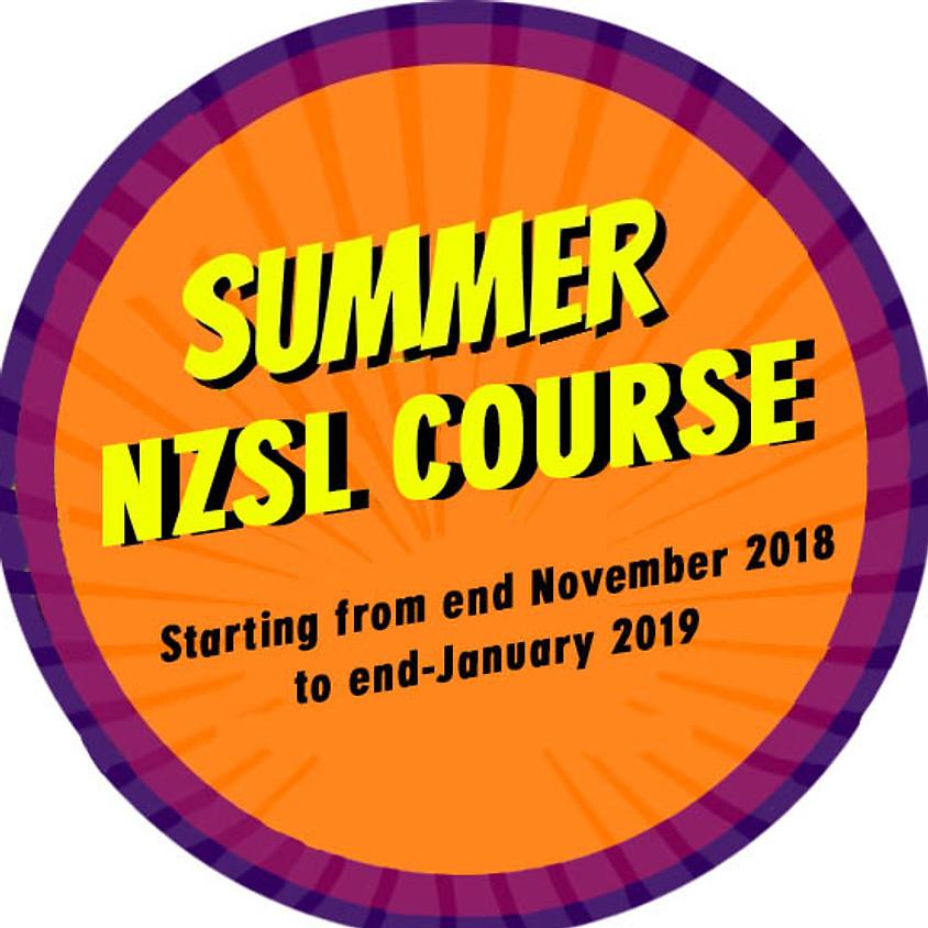 NZSL Summer Course - East Coast Bays