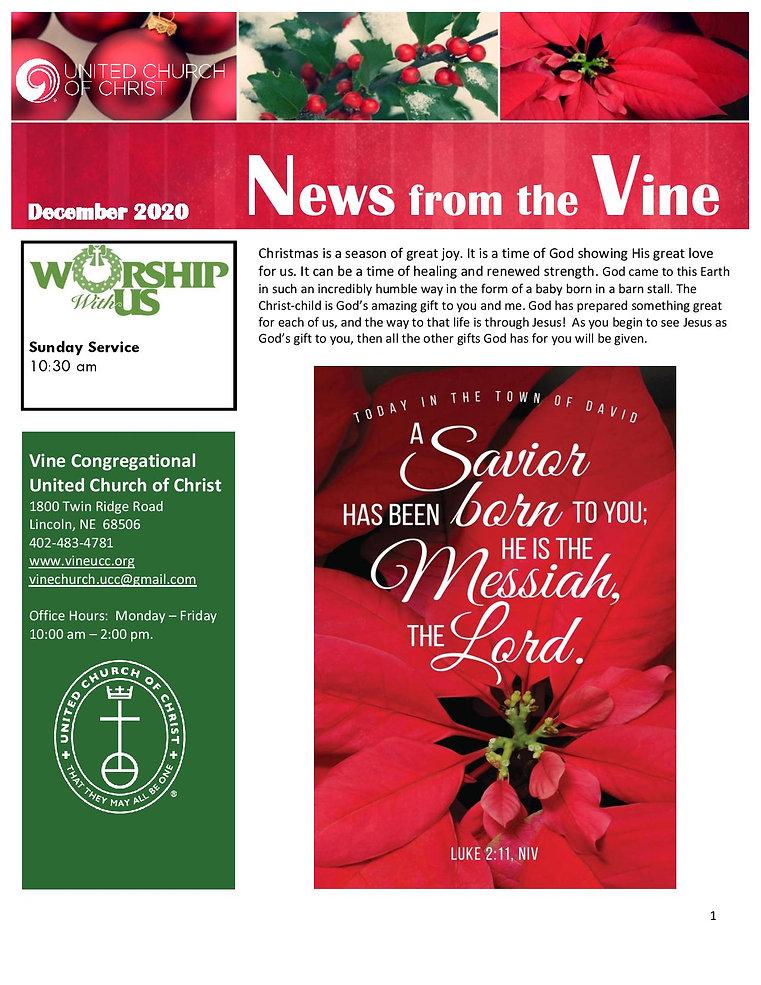 December 2020 Newsletter-page-001.jpg