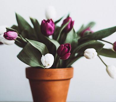 purple tulip flowers in orange vase.jpg