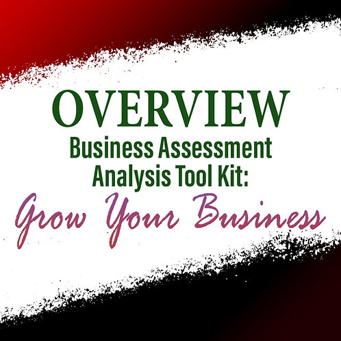Overview: Business Assessment Analysis Tool Kit To Grow Your Business